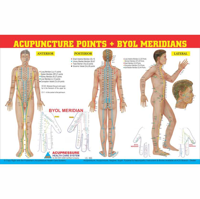 Acupuncture Point + Byol Meridian chart 11
